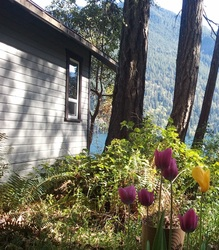 Lake Crescent Cabin in spring - lodging available year round in Olympic National Park